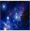 3D Galaxy Pattern Waterproof Durable and Eco-friendly Ceiling Murals