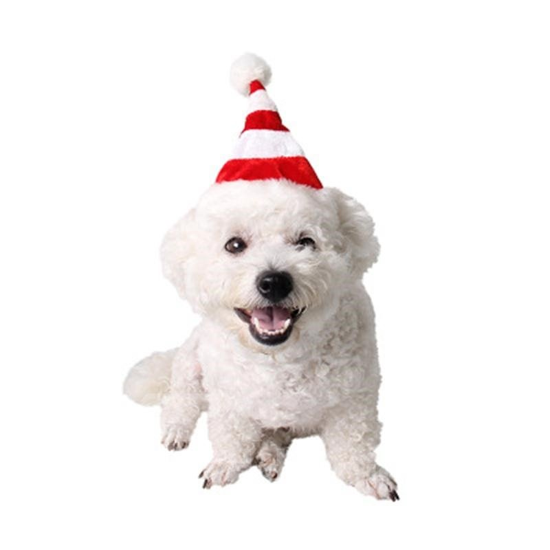 Cat Christmas Hat Puppy Dog Santa Hat Red
