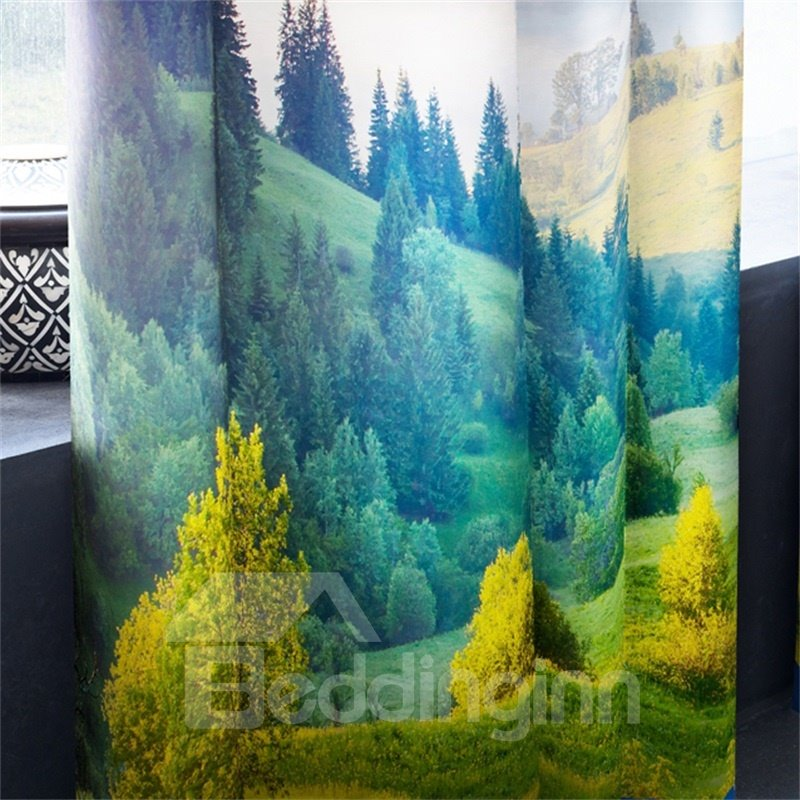 3D Broad Fields and White Clouds with Blue Sky Printed Decorative and Blackout Curtain