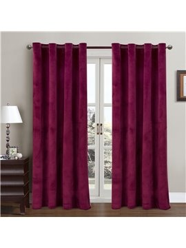 Contemporary Concise and Elegant style Functional Sunlight Pure Color 2 Pieces Decorative and Blackout Living Room Curtain