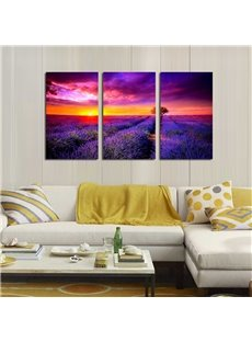 Lavender Field Waterproof and Eco-friendly 11.8*17.7in*3 Pieces Hanging Canvas Wall Prints