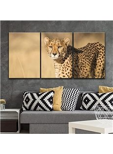 11.8*17.7in*3 Pieces Vivid Leopard Hanging Canvas Waterproof And Eco-friendly Wall Prints