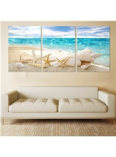 Shell Pattern 3 Pieces Hanging Canvas Waterproof Eco-friendly Framed Wall Prints