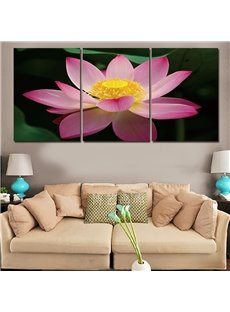 3 Pieces Lily Pattern Hanging Canvas Waterproof Eco-friendly Framed Wall Prints
