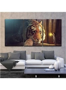 3 Pieces lying Tiger Pattern Hanging Canvas Waterproof Eco-friendly Framed Wall Prints