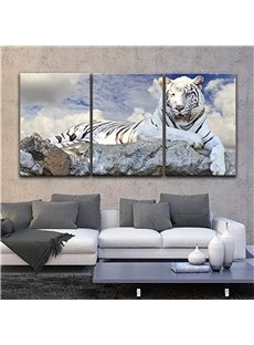 Tiger Pattern 3 Pieces Hanging Canvas Waterproof Eco-friendly Framed Wall Prints