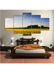 Cornfield Pattern 5 Pieces Hanging Canvas Waterproof Eco-friendly Framed Wall Prints