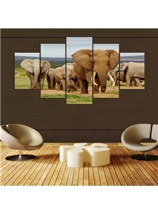 Elephant Pattern 5 Pieces Hanging Canvas Waterproof Eco-friendly Framed Wall Prints