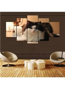 5 Pieces Hanging Canvas Cute Cat Pattern Waterproof Eco-friendly Framed Wall Prints