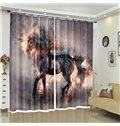 Raising in Fire Black Unicorn Vivid Smoke Animal Curtain