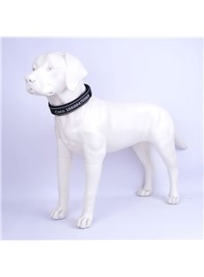 Personalized Reflective Stripe Durable Nylon Embroidered Pet Collar