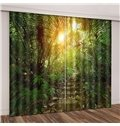 Stony Track in Jungle Sunshine through Blackout Vivid Green Plants Curtain