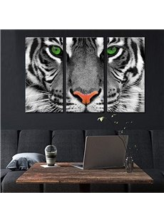 Waterproof Eco-friendly Tiger Pattern 3 Pieces Hanging Canvas Wall Prints