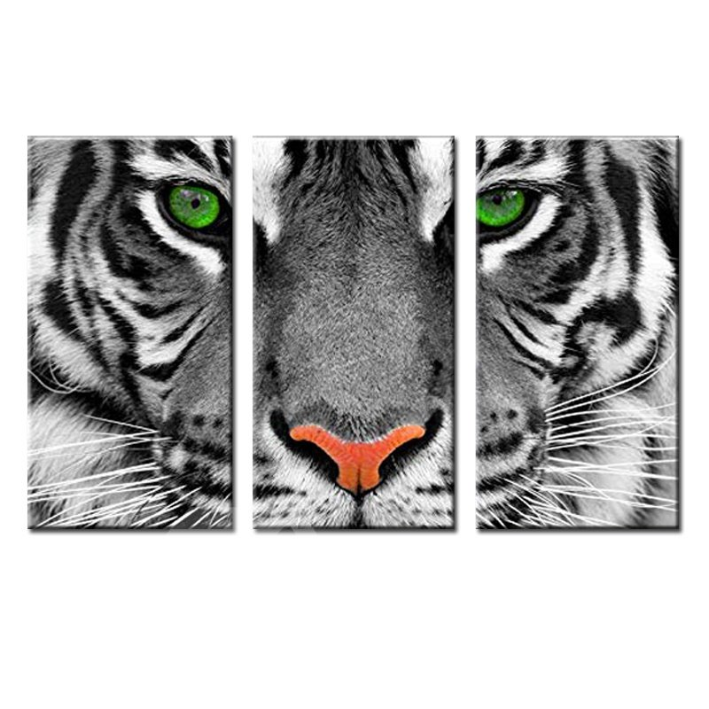 Waterproof Eco-friendly Tiger Pattern 3 Pieces Hanging Canvas Framed Wall Prints