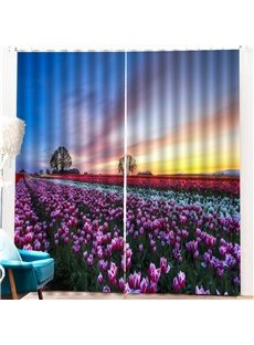 Beddinginn 3D Pastoral Sky Blackout Curtain Curtains/Window Screens