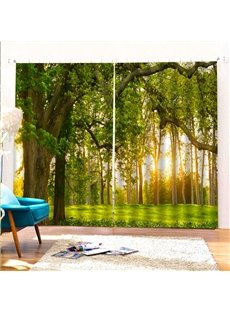 Beddinginn Landscape Curtain Modern Ultraviolet-Proof Curtains/Window Screens