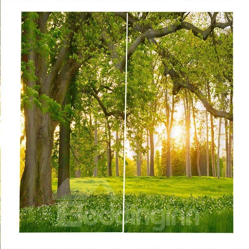 Beddinginn Landscape Curtain Modern Ultraviolet-Proof Curtains/Window Screens