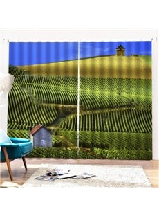 Beddinginn Decoration Landscape Pastoral Curtains/Window Screens