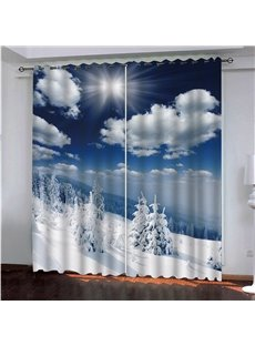 Beautiful Snow Scene with Sunlight Polyester Blackout 3D Printed Curtains