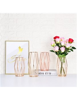 Nordic Ins Wrought Iron Vase Simple Transparent Glass Hydroponic Culture Device Rose Gold Diamond Soft Decoration