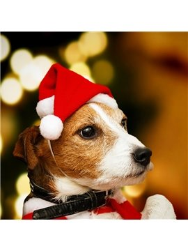 Christmas Party Pet Hat for Cat and Dog Decorative hat