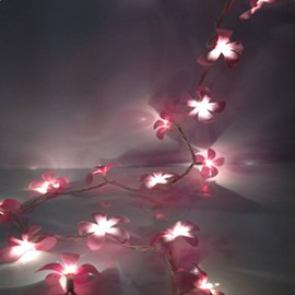 Gorgeous Pink Fabric 8.5 Feet Length 20 Bulbs Home Decoration LED String Light