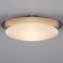 Unique Design Pretty 1-Head Oval Shape Flush Mount