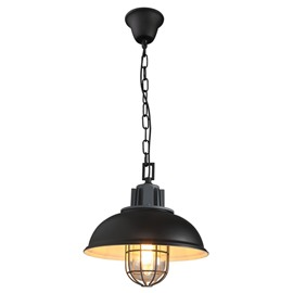 Black Iron Framed Semicircle Shape Decorative Pendant Light