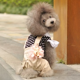 Lovely Dot Lace Suspender Trousers Dog Clothing