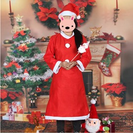 Popular Santa Claus Style Christmas Costume Cloth for Women