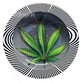 Green Leave and Zebra-stripe 3D Pattern Ashtray