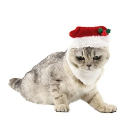 Cat Christmas Hat with Beard Puppy Dog Santa