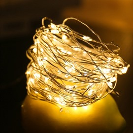 6.6 Feet Firefly-like Copper Wire Battery Operated String Lights