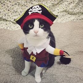 Funny Pet Clothes Pirate Dog Cat Costume Suit Dressing up Party Clothing
