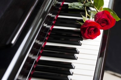 Red Rose with Piano Design  2-Piece Pillow Cases