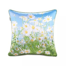 Transvaal Daisys Paint Throw Pillow