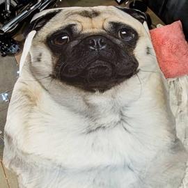 3D Lovely Pug Dog Design Super Soft Polyester Quilt