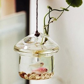 Pretty Mushroom House Hanging Glass Vase