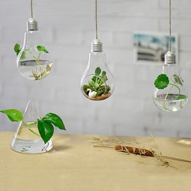Modern and Creative Bulb Design Glass 1-Piece Hanging Terrarium