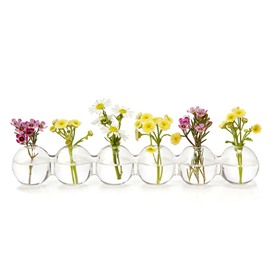 Creative One-piece Glass Vase Water Planting Glass Vessel Desktop Flower Pots Vase Set