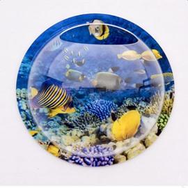 Fresh Acrylic Round Ocean Fishes Pattern Wall Decoration Flower Vase