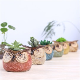 Delicacy and Elegant Owl Shape Lovely Ceramics Succulent Pots