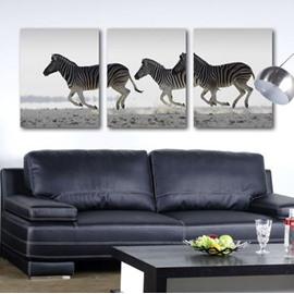 New Arrival Beautiful Running Zebras Print 3-piece Cross Film Wall Art Prints