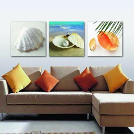 New Arrival Lovely Shell and Pearl Print 3-piece Cross Film Wall Art Prints
