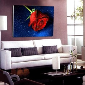 New Arrival Beautiful Single Spray of Red Rose Print Cross Film Wall Art Prints