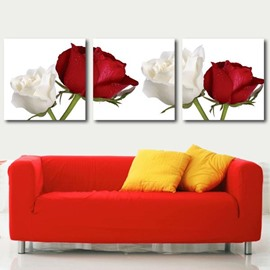 Beautiful White and Red Roses Print 3-piece Cross Film Wall Art Prints