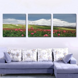 New Arrival Beautiful Pink Flowers and Snow Mountain Print 3-piece Cross Film Wall Art Prints