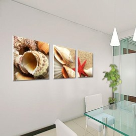 Lovely Shells on the Beach Print 3-piece Cross Film Wall Art Prints
