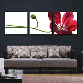New Arrival Lovely Red Flower and Bud Print 3-piece Cross Film Wall Art Prints