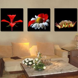 New Arrival Gorgeous Red Flowers and Stamen Print 3-piece Cross Film Wall Art Prints